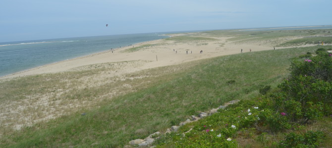 Cape Cod Beach Guide